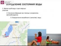 Экологические проблемы озера Гусиное